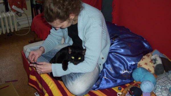Katzensaboteur