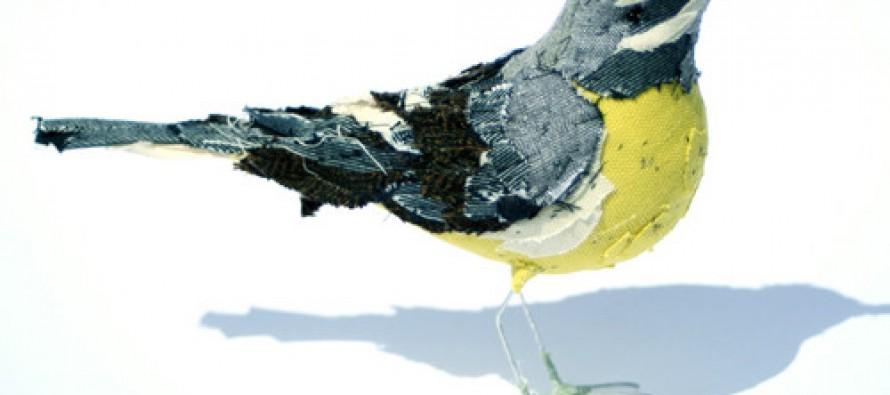 Die Vögel zwitschern wieder
