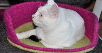 Häkeln, Filzen: Katzenkorb