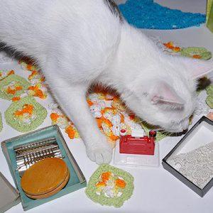 Lucy liebt Blüten und Schachteln