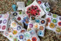 somalia-granny-squares-ankunft-05