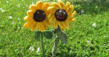 lachende Sonnenblumen
