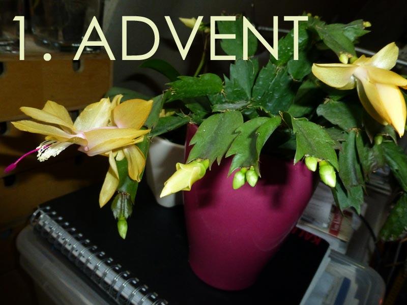 1. Advent * Ein Märchen zur Einleitung