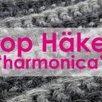 "6. Dezember 2014 * Gehäkelter Loop ""harmonica"" * nadelspiel Adventskalender"