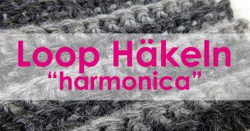 "6. Dezember 2014 * Häkeln Loop ""harmonica"" * nadelspiel Adventskalender"