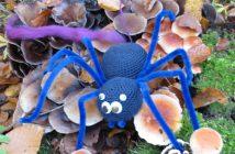 K640_Arachno Lana