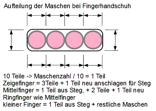 Aufteilung Finger bei Handschuhen